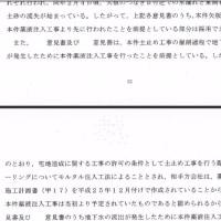 工事差し止めの仮処分について(大阪高裁抗告審判決)4 判決文3 変状との因果関係