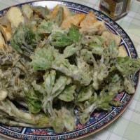 山菜の王様・・・女将作、「タラの芽とコシアブラの天婦羅」美味しい!自然の恵みに感謝。