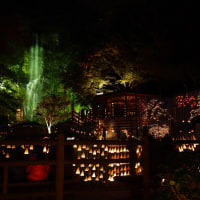 2016清水竹灯り  ~佐賀県小城市の清水地区~