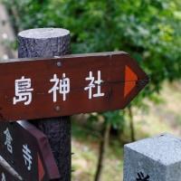 翡翠@厳島湿生公園 2017 06.19