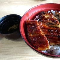 うなぎ 羽島の魚勝
