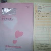 今日は忙しい一日で朝集団検診に行、昼から研修会に参加しました