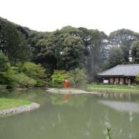 池越しの本堂