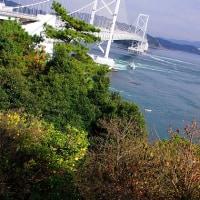 徳島の旅(その六)鳴門海峡で渦潮を見る
