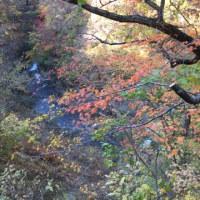海の秋山の秋