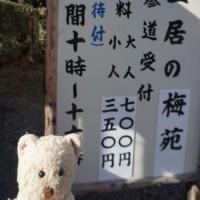 京福電鉄の北野線で、「北野天満宮」へ。梅もちらほら、「梅苑」の公開スタート。