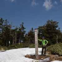 残雪と花の苗場山