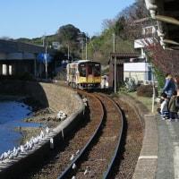 天竜浜名湖鉄道 フルラッピング列車「直虎号」 浜名湖佐久米駅 (2016年12月31日)