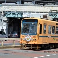 東京都電 王子駅前~飛鳥山(2017.5.21) ありがとう7000形HM 7022