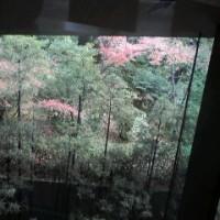 円山応挙 -「写生」を超えて-