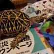 ☆ホシガメ☆シャカシャカ♪が止まらない(笑)σ(^_^;)
