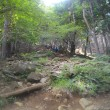 暑さにヘバリながらやっと登る丹沢;塔ノ岳(今年26回目)