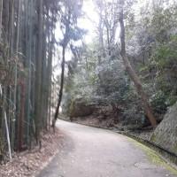 長福寺城  近江国(近江八幡)