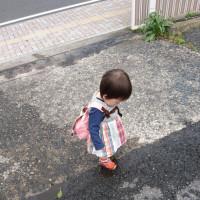 お散歩コース~県立図書館までの道のり~