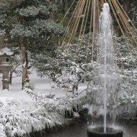 冬の金沢 その5 雪の兼六園③