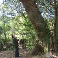 瞑想ブログ
