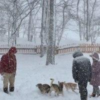 吹雪の中で…