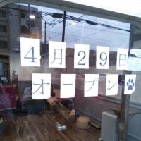 ねこたまご+Cafe   open♪