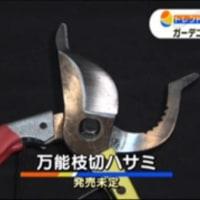 WBS ワールドビジネスサテライト:テレビ東京 2017/06/21(水)