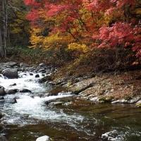秋の撮影旅行 その2