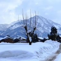 雪国で写す 集落と峡谷