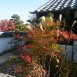 紅葉が綺麗で松茸ご飯がおいしかったんだよ。