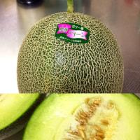 肥後グリーン Le melon de Kumamoto