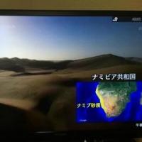 年始にグレートレースを見る②ナミブ砂漠250km