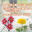 安い造花を買い物かごで ご購入出来るサイトのご紹介
