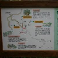 ▼モデルコース(1)自然満喫コース・シラヌタ編