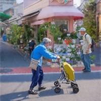 2017.06.15 亀戸中央通り商店街: 花屋とシイジの風景
