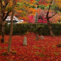 嵯峨野 あだしの念仏寺の秋。