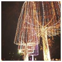 光の祭典2016 @元淵江公園