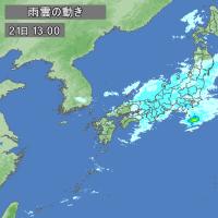 日記(3.21)東京さくら開花