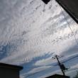風が涼しい(*^^)v