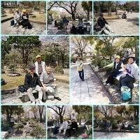 """高校の同窓の、姫路での """"第70回歩こう会"""" です。"""