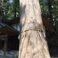 根小屋諏訪神社