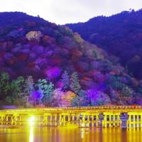 京都嵐山の花灯路イベント