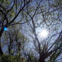 丁度いい天気、過ごしやすい日。