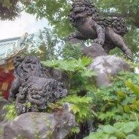 2017.06.05 千代田区 神田明神: 獅子山の獅子