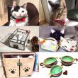 猫好きさんのイベント情報 保護猫募金箱設置します!