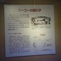 上野国立科学博物館の 「フーコー振り子」です。