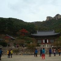 韓国陶旅5-15こちら開岩寺