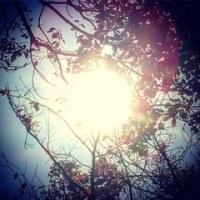 おひさまの夜 と 胸いっぱい!の…  星の朝。。
