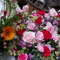 4月30日 明日の誕生花・ゆかりの花 花言葉は?(*^O^*)☆