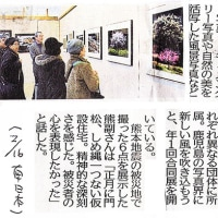 「風」展・新聞記事