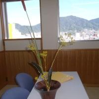 お花を生けました