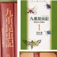 九重昆虫記の表紙について