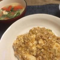 1月8日 夕飯…麻婆豆腐ご飯
