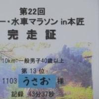 日記0139:第22回日本一・水車マラソンin本匠の結果